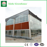 Multi-splinter Agricultural PC Sheet Greenhouse