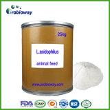 Los Probióticos Lactobacillus Acidophilus en polvo a granel pollo Animal animal Feed