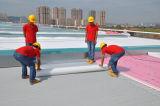 Une membrane étanche en PVC renforcé homogène/TPO