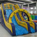 Гигантские надувные слайд с бассейном для продажи (SL-014)