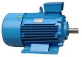 Электрический двигатель горячего сбывания трехфазный с сертификатами системы ISO