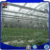 Структура оцинкованной стали выбросов парниковых газов для выращивания овощей растет