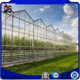 상업적인 강철 구조물 유리제 식물성 온실