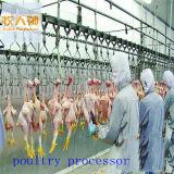 Processador automático de aves para ganso de pato de frango e coelho