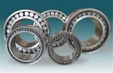 Double rangée SL06 016 E plein les rouleaux du roulement à rouleaux cylindriques sphérique de travail pour l'exploitation minière