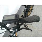 20 Bicicleta eléctrica plegable pulgadas con la batería de litio E bicicletas