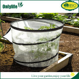 Singlelife Eco-Friendly White Pop-up Greenhouse for Protecting Plants