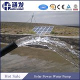 Prezzo della pompa di sollevamento solare dell'acqua per agricoltura