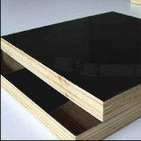 까만 Film Faced Plywood 또는 Marine Wood