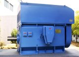 3500kw 10kv 600rpm 다람쥐 감금소 AC 전기 모터