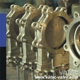 Getto Steel Wcb/Lcb/Wc6/Wc9 Lug Knife Gate Valve con Yoke (Z73H)