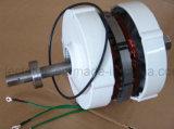 12V 24V 600W Brushless Generator Met lage snelheid van de Magneet van de Zeldzame aarde Permanente