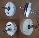 100W Dauermagnetp.m. Drehstromgenerator-Generator mit Controller