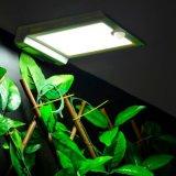 IP65 ultra sottili impermeabilizzano l'indicatore luminoso solare molle del sensore di movimento di illuminazione 46 LED per l'illuminazione esterna del percorso del giardino