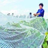 고품질 농작물 보호 플라스틱 백색 반대로 우박 그물