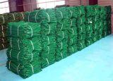 Haute qualité PE Plastique coupe-vent Net