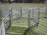 1,6 м x 2.1M 5 направляющих крупного рогатого скота Ограждения панели