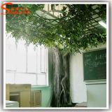 Grande albero artificiale della pianta del Ficus della migliore decorazione dell'interno di vendita