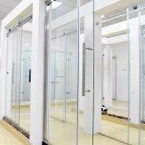 Les compartiments luxueux de douche choisissent la porte de douche de glisseur et le panneau latéral - nickel