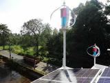 Générateurs de turbine à vent 600 MW Ce Maglev sans bruit