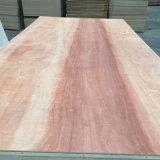 Cara de Bintangor del grado de BB/CC y madera contrachapada posterior de la base del álamo