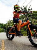 20 بوصة [48ف] [500و] [إلكترّيك] سمين إطار العجلة ثلج درّاجة