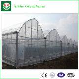 Única estufa da película plástica do arco para a plantação vegetal