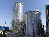 Stahlsilo-Sortierfach des Zufuhrbehälter-unteren Mais-500tons mit galvanisiertem Stahl für Verkauf
