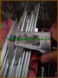 De warmgewalste Staaf van Roestvrij staal 304 voor Hete Verkoop