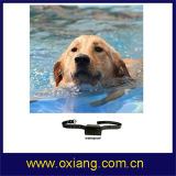 Анти--Lost Pet Traning Collar 3 в 1 Bluetooth Dog Training Collar