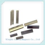 Hoge Magneet Gradeneodymium met SGS RoHS Certificatie