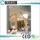 Le grand dos a décoré le miroir découpé fabriqué à la main d'art de miroir de mur de miroir