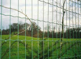 고품질을%s 가진 동물원 Palisade 담 중국제