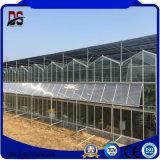 ファンが付いている商業ガラス蓋のアルミニウム温室