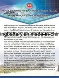 1.2V de Batterij van het Type van Zak van 10-1300ah de Navulbare Batterij van Drie Reeksen (Batterij Ni-CD/Ni-Fe/Ni-MH) van Hengming
