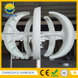 Niedriger Wind-Energien-Generator der Anfangswindgeschwindigkeit-12V 24V 300W vertikaler