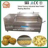 China-Fabrik kaufen beste niedrige Kosten industrielle Frühkartoffel-Schalen-Maschine
