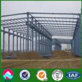 Almacén de la estructura de acero de bajo coste con alta calidad