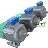 7kw AC de 3 phases à vitesse réduite/générateur à un aimant permanent synchrone de T/MN, vent/eau/pouvoir hydraulique