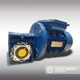 Input FlangeのRV Worm Aluminium Gear Reducer