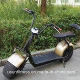 電気都市ココヤシのスクーターおよび電気オートバイNy-E8