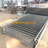 L'acciaio tubolare superiore del metallo del ciclo di alluminio che recinta con la polvere ha ricoperto