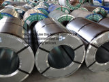 Bobine 316 dell'acciaio inossidabile di alta qualità