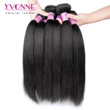 Tessuto diritto dei capelli umani di Yaki dei capelli umani dei commerci all'ingrosso 100%