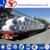 Tela de nylon de la cuerda del neumático de Shifeng vendida a Europa