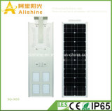 Nuevo 60W todo en una iluminación solar al aire libre del LED con la batería de la vida Po4
