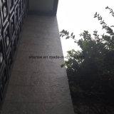 Flectional antibactérien doux noir murs carrelés de Jade
