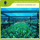 Плетение 100GSM HDPE земледелия пластичное