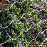 A parede decorativa do verde do Helideck dos trilhos da ponte de suspensão da balaustrada do balcão da escada do pássaro do Aviary dos animais do jardim zoológico do cabo da virola do aço inoxidável X-Tende a rede da corda
