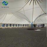 حرارة - مقاومة [بتف] يصمد سقف غشاء